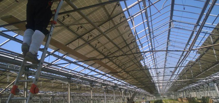 Case History: Revamping impianto fotovoltaico da 5MW su serra.